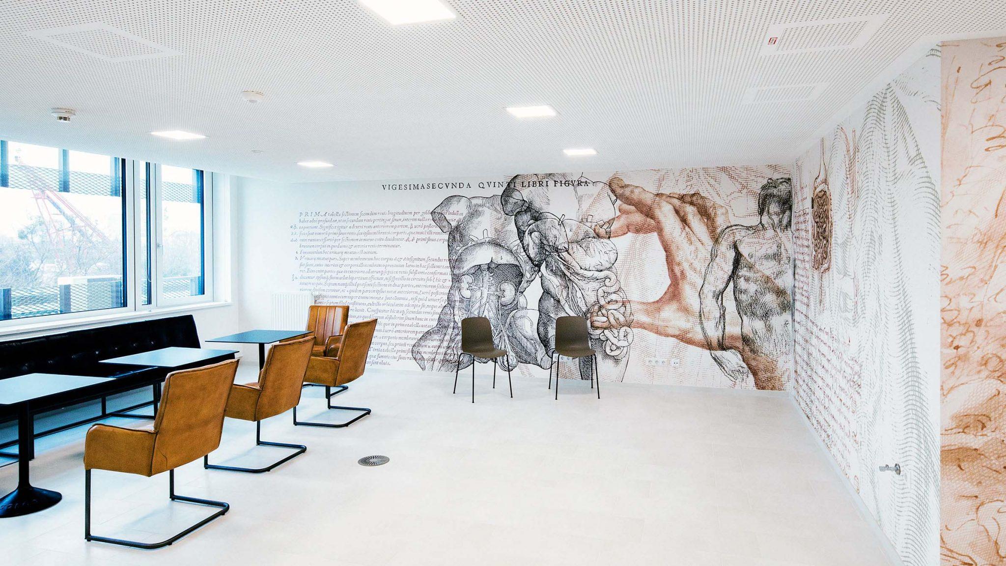 Sitzbereich eingerichtet mit Lederstühlen, Tischen und Tapete mit anatomischen Zeichnungen von Hand und Torso.
