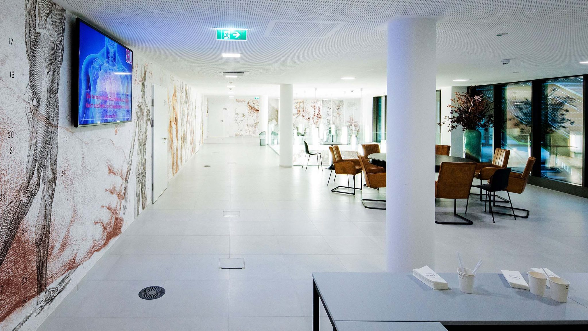 Große Lounge mit Lederstühlen und Tischen eingerichtet. Tapeten mit Abbildungen von anatomischen Rötel- und Bleistiftzeichnungen.