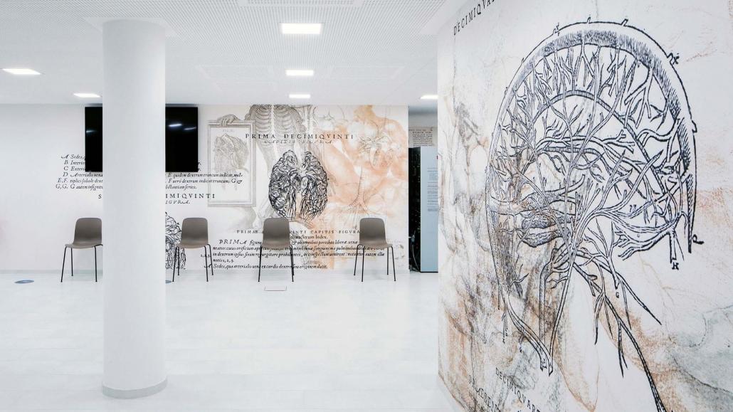 Bereich mit einigen Stühlen und Tapeten mit anatomischen Darstellungen.