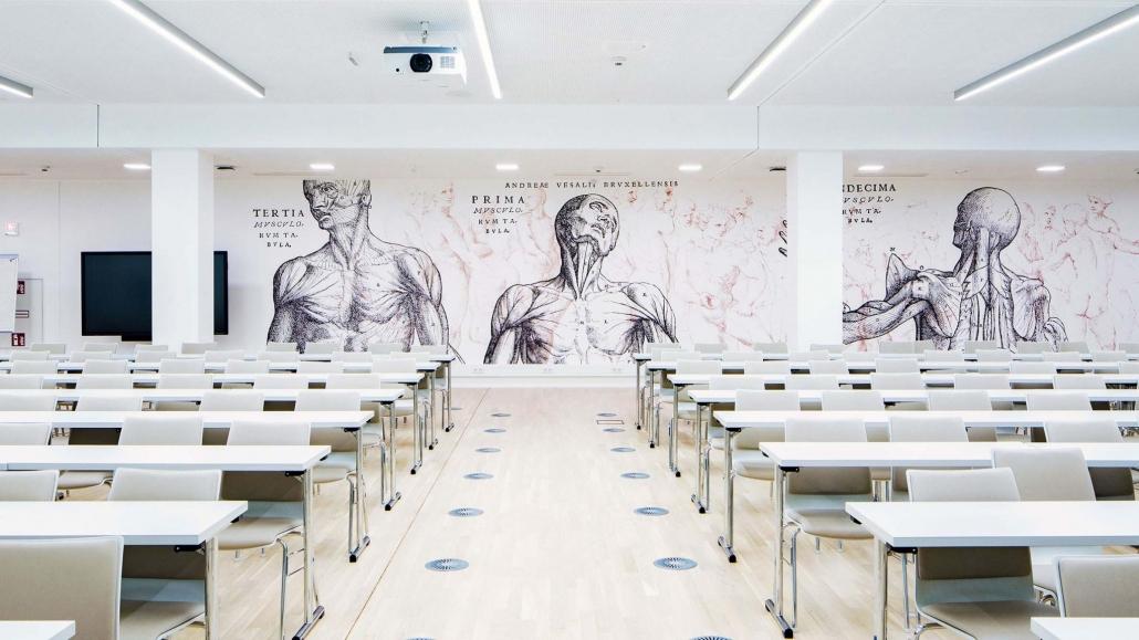 Auditorium Maximum mit Tapeten die anatomische Zeichnungen von Kopf und Oberkörper darstellen.